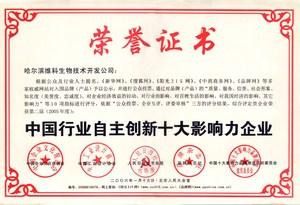 中国行业自主创新十大影响力01.jpg